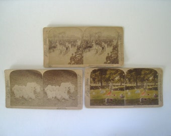 3 antique stereoscope cards from J.F. Jarvis and Underwood. 1890s photographs of National Cemetery in Arlington, Chicago, and piglets.