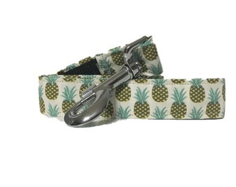 Strap dog pineapples