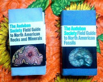 The Audubon Sociiety Field Guide to North American Rocks and Minserals and The Adubon Society Field Guide to North American Fossils Book Set