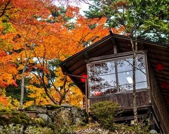 Japan Tea House, Canvas Fall Photos, Autumn Foliage, Fall Decor Ideas, Red Maple Leaves, Office Decor Print, Fall Home Wallpaper, 24x36