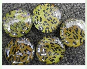 Cheetah print glass magnets