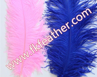 "28"" - 30"" Ostrich Feather"