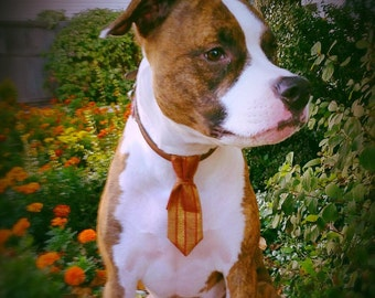 Holiday Dog Ties