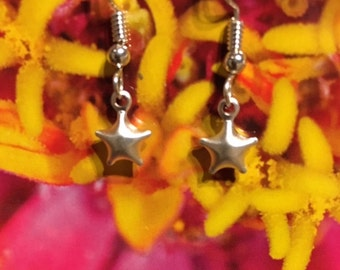 Shiny Puffed Star Sterling Silver Earrings