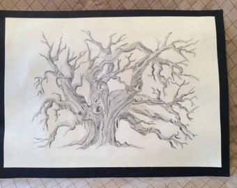 Realistic Tree Pencil Sketch