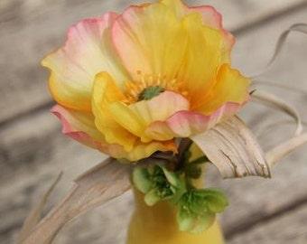 Poppy in yellow vase