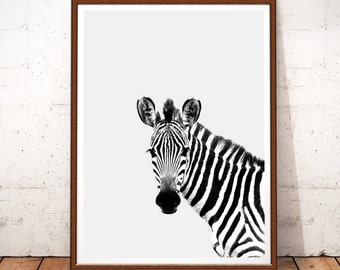 Animal Print Wall Art zebra wall art | etsy