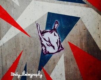Picture street art
