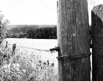 Countryside Views Digital Print (Medium & Small)
