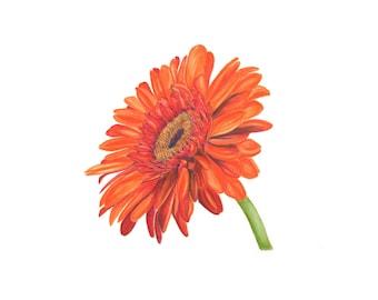 "Daisy Watercolor Painting ""Bee Happy"""