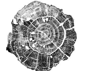 Timberline [5]