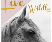 Horse Photograph - Nature Photography - Black and White Art - Horse Art - Pink - Gold - Modern Art - Text - Quote - Typography - Oversized