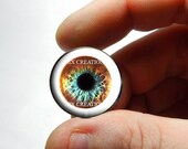 Glass Eyes - With white - Pastel Funk Zombie Human Doll Eyeball Flat Cabochons - Pair or Single - You Choose Size