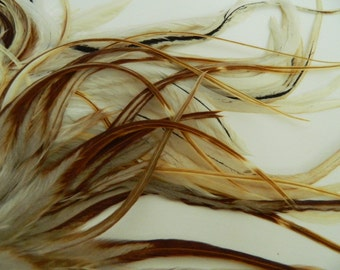 """6 Natural Light Ginger Variant, THICK TAPERED Hair Feather Extensions, 7"""" to 9"""" LONG"""