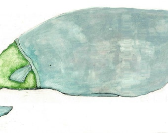 whale with green sweater
