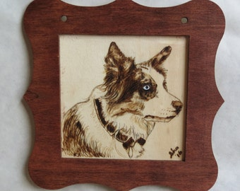 Pet Portrait Merle Collie Pyrographic Art Wall Plaque Framed Made to Order by Shannon Ivins