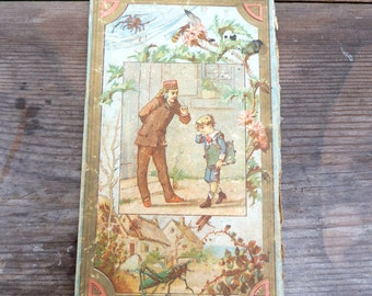 Antique French Victorian chromolithograph cover of book piece / insects
