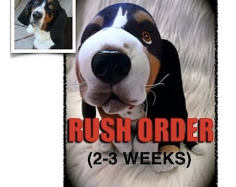 Custom Stuffed Animal RUSH 2-3 weeks - Pet Lover Gifts - Dog Gift - Cat Gift - Pet Replica - Plush Pet Portrait - December Delivery