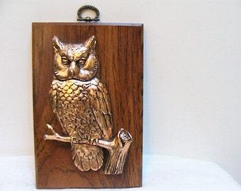 Rustic Vintage Owl Plaque Copper Wood Grain