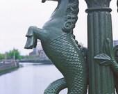 Dublin Ireland, Liffey River, Seahorse Lamppost, Grattan Bridge, Irish Photography, Sea Foam Blue, Wall Decor Office Decor Seahorse Print