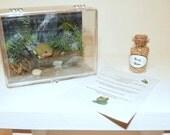 American Girl Pet set - frog aquarium, food, care sheet