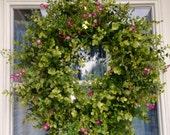 Eucalyptus Wreath, Boxwood Wreath, year round wreath, Natural Wreath, Summer wreath, Door wreath, Front Door Wreath, Spring Wreath, Rustic