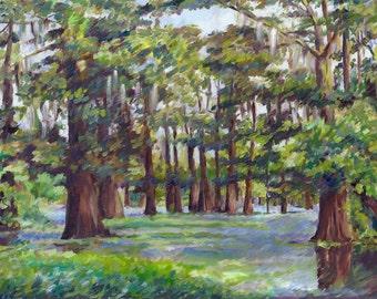 Morning Bayou - Cypress Trees, 8 x 14,  Original Oil painting - Framed   Handmade Custom Artwork. Realism Art, FREE SHIPPING