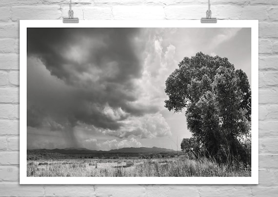 Black and White Photography, Landscape, Tree Art, Thunderstorm Art, Prairie, Stormy, Sky Art, Arizona, Monsoon, Huachuca, Nogales, Tucson
