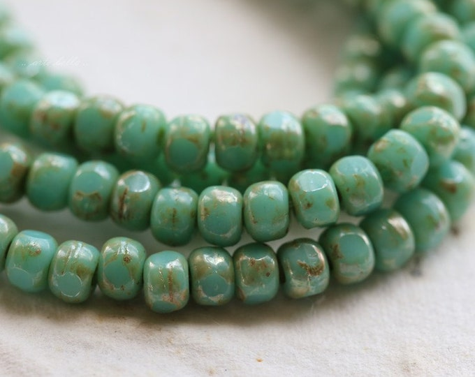 SILVERED TURQUOISE SEEDS .. 50 Picasso Czech Glass Tri-Cut Seed Bead Size 6/0 (5259-st)