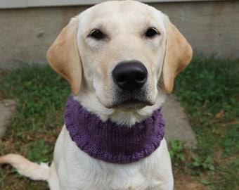 Knit Dog Cowl Scarf