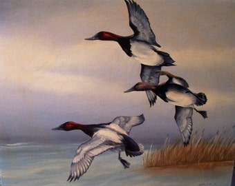 Original Oil Painting-Canvas back Ducks