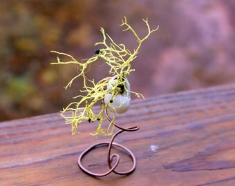 Copper wire sculpture-Live tree lichens-Miami snail shells-OOAK wire art-White snail shell-Woodland art-Easy care terrarium