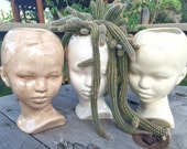 Mocha Modern Ceramic Head Planter in stock
