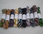 Mini Skeins - BMFA Socks that Rock lightweight 6g set of 10 (set 17)
