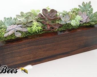 Narrow Shou Sugi Ban Succulent Garden - Handmade Shou Sugi Ban Technique & Stained Wood Box Planter - Mount or Sit - Select Your Garden