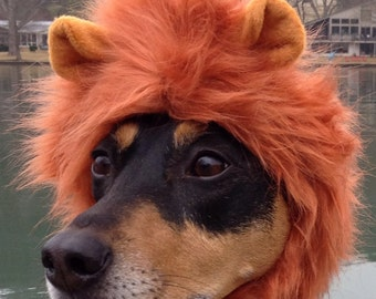 Lion Mane for Dogs and cats in signature gift bag