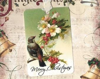 Christmas, Gift Tags, Bird Tags, Christmas Florals, Merry Christmas