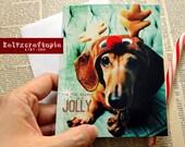 Reindeer Jolly Dachshund Christmas Card Set of 5