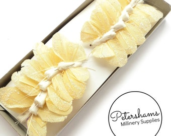 7cm Glitter Feather Butterflies on Wire, Box of 12 - Cream