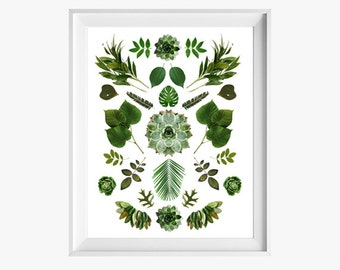 Green Collage 8x10 or 8.5x11. As seen in HGTV. Fine Art Photographic print. Minimalist. Natural Home Decor. Indoor garden botanical.