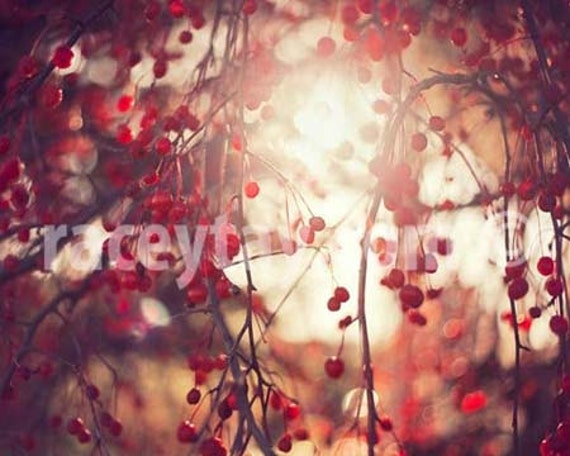Red Berries, Fall, Nature photography, Pink Red, Pale Yellow, Romantic Decor, Bedroom Wall Art Print