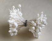 New Item -- 1 Bundle of Double Sided White Pollen Floral Stamen