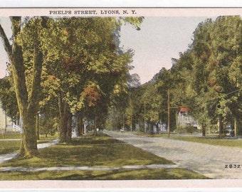 Phelps Street Scene Lyons New York 1920c postcard