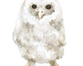 Tawny Owl Watercolor Painting - 5 x 7 - Fine Art Print - Giclee - Woodland Baby Animal