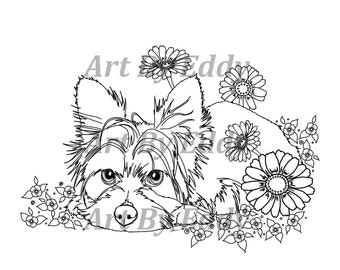 Zentangle yorkie etsy for Yorkie coloring pages