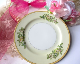 Vintage Japan Floral Bread & Butter Plates Set of Six - Weddings Bridal Tea Parties
