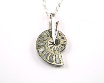 Pyritized Ammonite Sterling Silver Pendant - N874