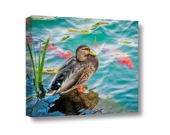 Large Canvas Wall Art Decor Duck Koi Water Pond