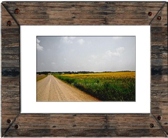 SALE Dirt Road Photography-Rustic Wall Art-Rustic Landscape-Horizontal Art-Rustic Wall Decor-Farmhouse Art-Farm Photography-Field of Flowers