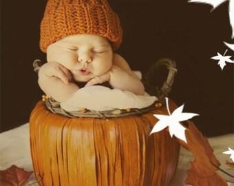 Summer SALE pumpkin beanie crochet hat